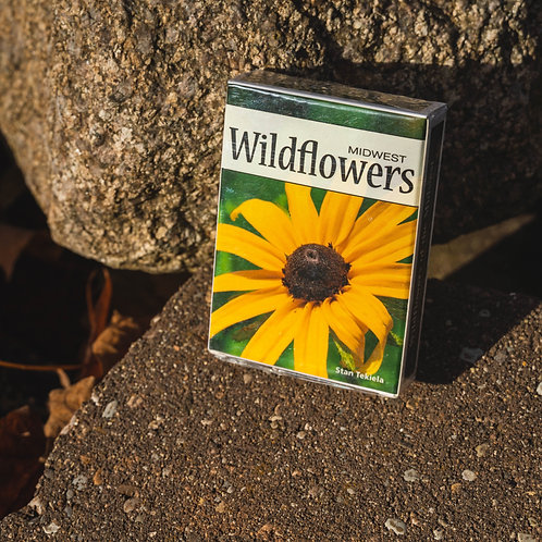 Playing Cards: Wildflowers