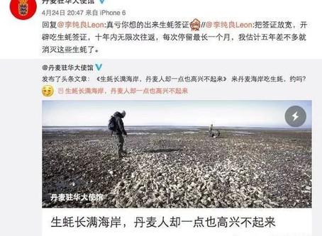 把加拿大泛滥的螃蟹卖到中国?!美加客户商业计划书获点赞!