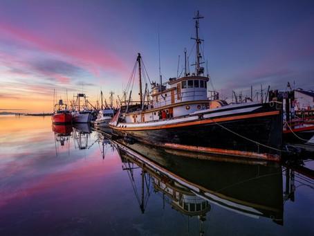 Nova Scotia最新紧缺技术移民项目