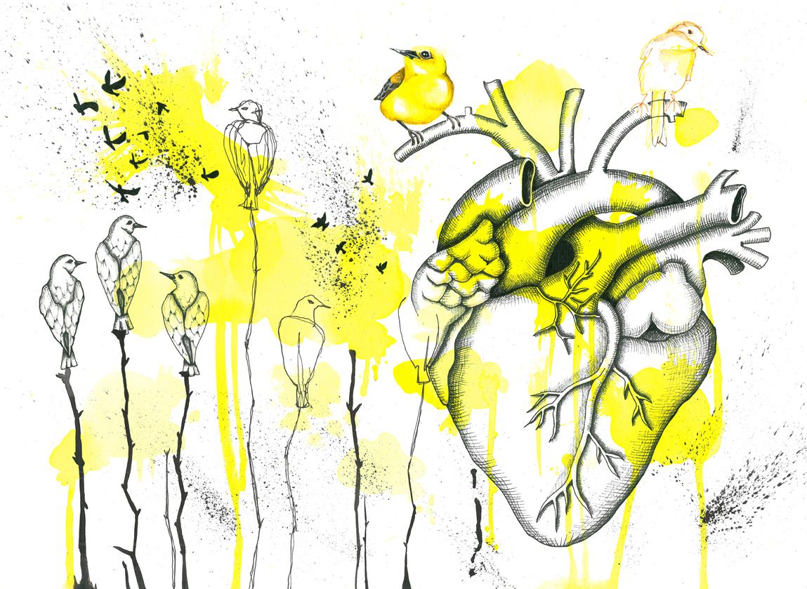 Pajaros amarillos