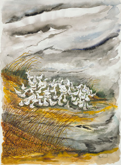 63 ducks in a storm1 22x30 web