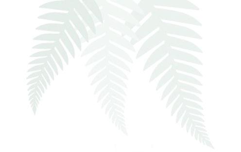 laroma.new-zealand-ferns-v.jpg