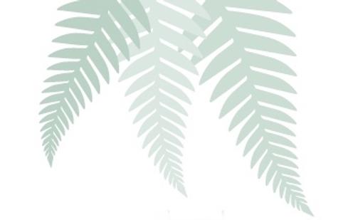 laroma.new-zealand-ferns-v.png