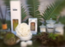 laroma-products.jpg