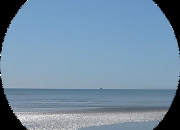 Tasman Sea Breeze