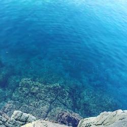 きのうの近所の磯。_「青い」よりも「碧い」って感じ。_真夏の日本海は美しくて大好き。_+_+_+_#ヨガ #香住 #ヨガ教室 #アロマ #ヨガカウムディ #yoga #kaumudi #yogakau