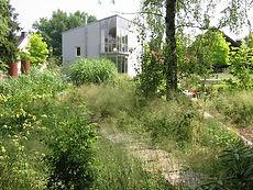 Bepflanzung Sommer.jpg