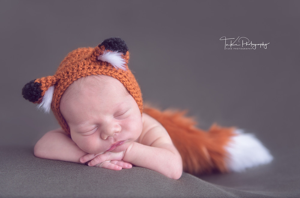 newborn baby boy with fox outfit
