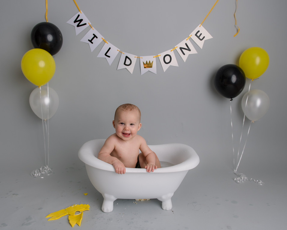 Where the wild things are first birthday photos