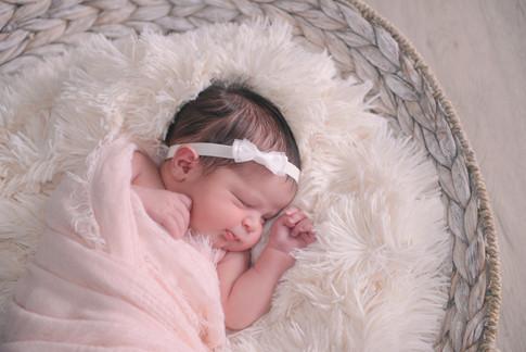 orlando newborn photographer
