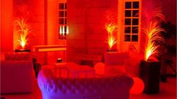 Espace lounge avec arbres lumineux