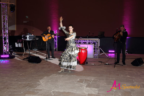 Orchestre Flamenco Gipsy Chantilly 4