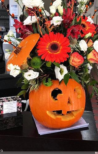 Flower pumpkin  fresh