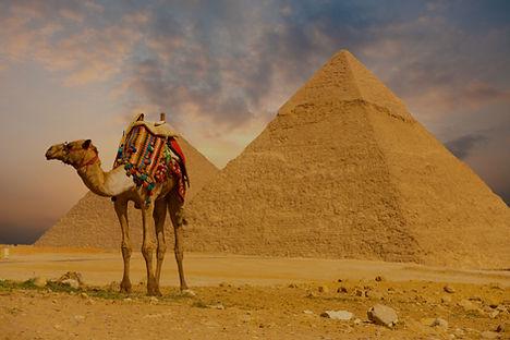 EGITO%20-%20Cairo%20Camelo%20-%201029145
