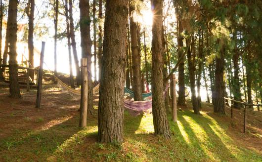 Redário no Bosque