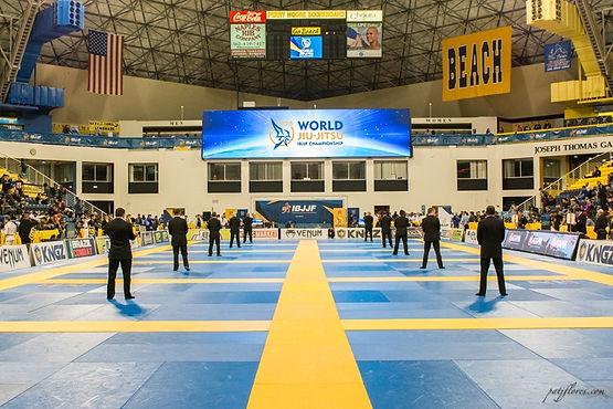MF Jiu-jitsu brésilien, Cours particuliers, Cours collectifs, JJB Lyon, Grappling Lyon, Self Défense, Jiu-jitsu brésilien bellecour, stage jiu-jitsu brésilien