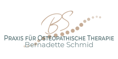 BS Logo Final transparent.png