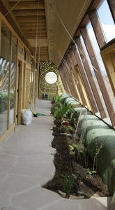 Interior shot with slanted front windows to right, planters to the left of the windows, an open floor to the left of the planters, and a wall of windows to the left of that, leading into the hosue