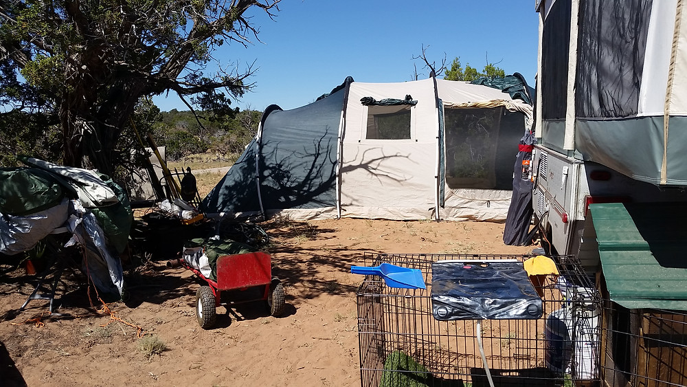 Popup on right, open ground on left, hoop tent in background