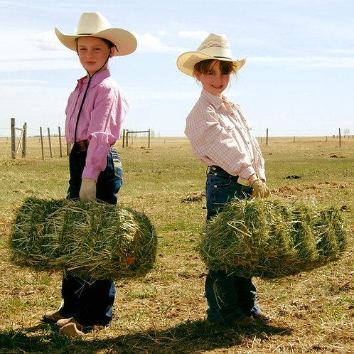 Mini Hay Bales