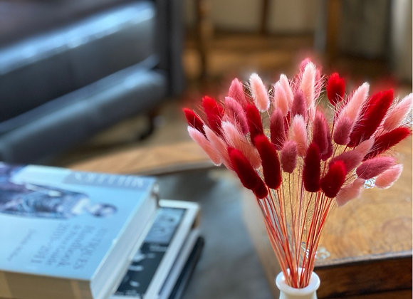 Shades of pink bunny tails