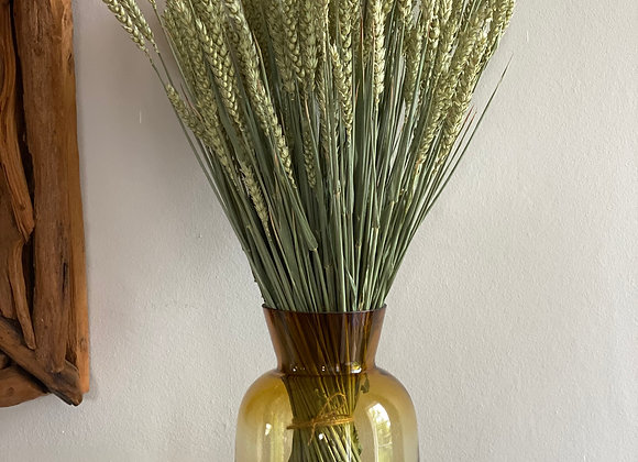Large bunch of natural wheat (Tarwe)