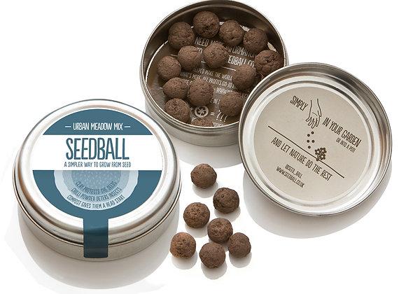 Seedball Urban Mix