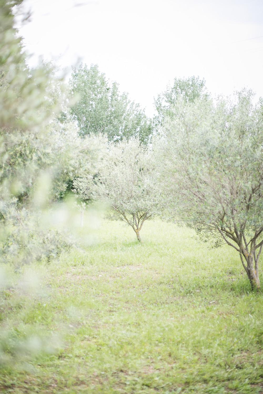 Workshop Photographie Mariage Fine Art Toulon