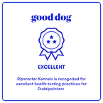 GoodDogPPExcellent.png