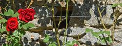 03 parc botanique de haute bretagne