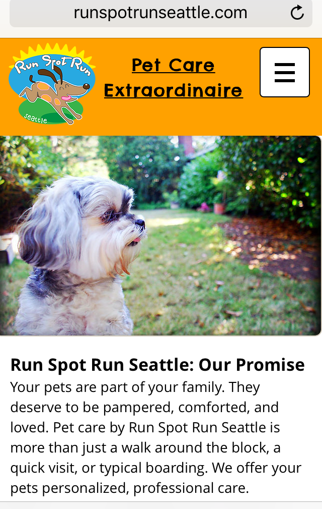 Run Spot Run Seattle Website