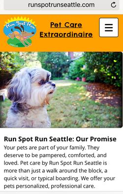 Run Spot Run Seattle Website