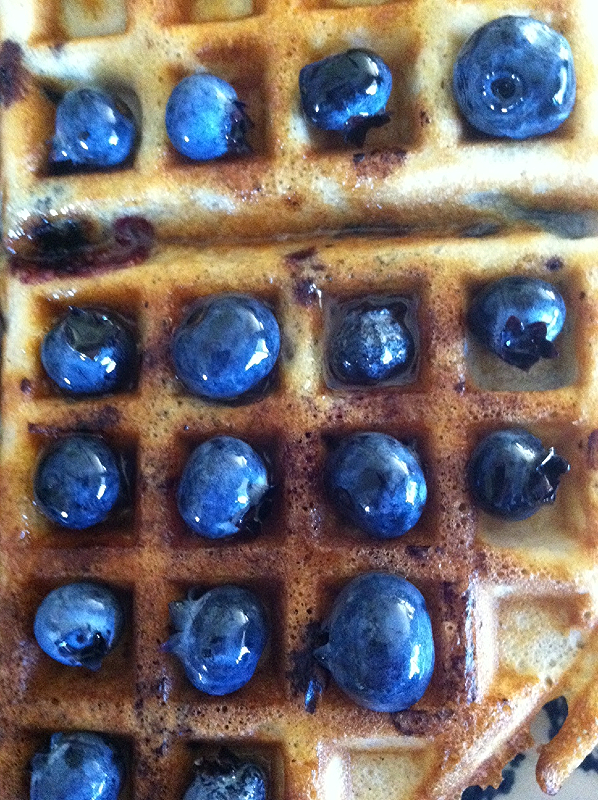 Rebecca Kraus: Blueberries Waffles