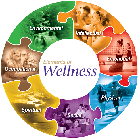 wellness%20wheel_edited.png