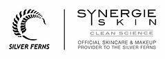 synergie logo.jpeg