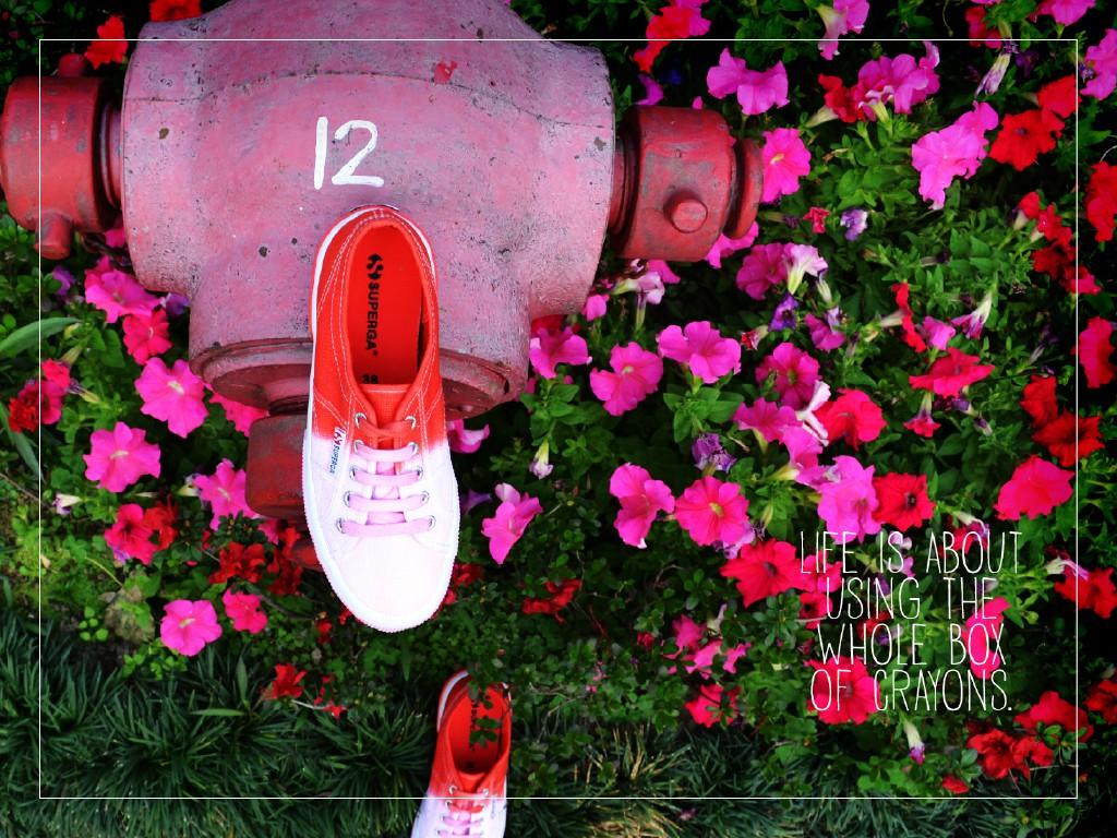 creative-catalogue-40.jpg