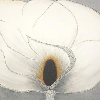 Magnificent Magnolia - SOLD
