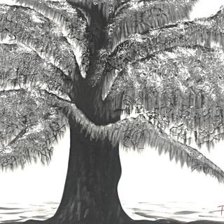 Mighty Mossy Oak