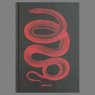 Mauricio Toro Goya - Impius.jpg