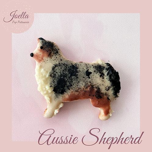 Aussie Shepherd