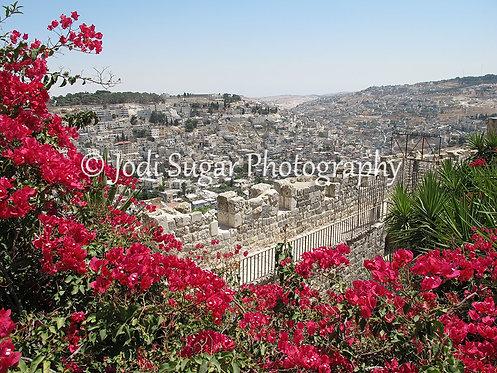 The City Of David, Jerusalem