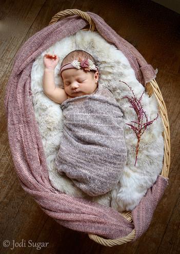newborns-12.jpg