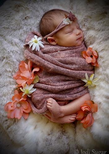 newborns-3.jpg