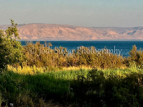 the Golan Heights meets the Kinneret
