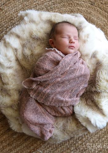 newborns-1.jpg