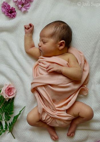 newborns-10.jpg