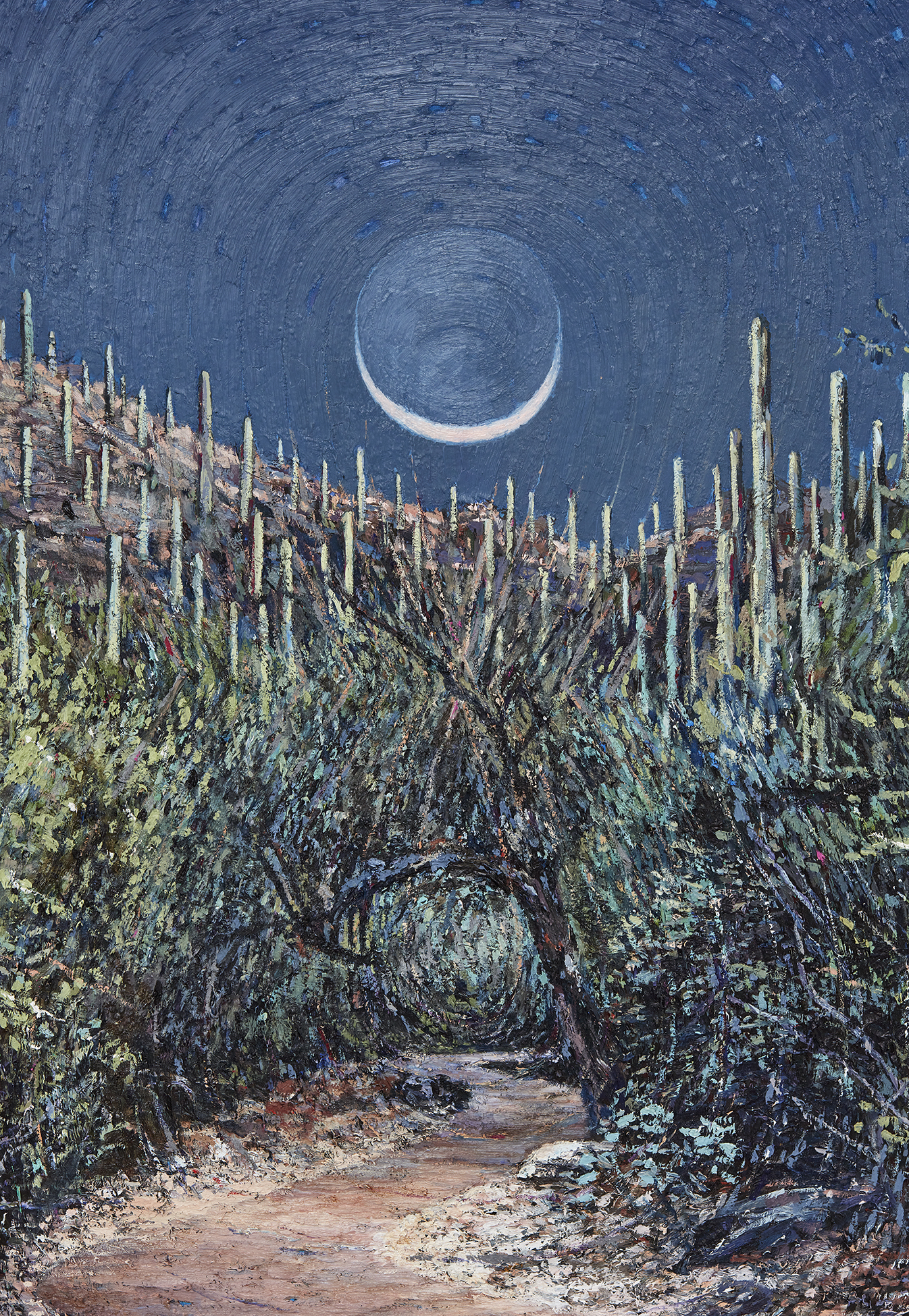 Wet Moon, Clear Path (Tucson) DETAIL