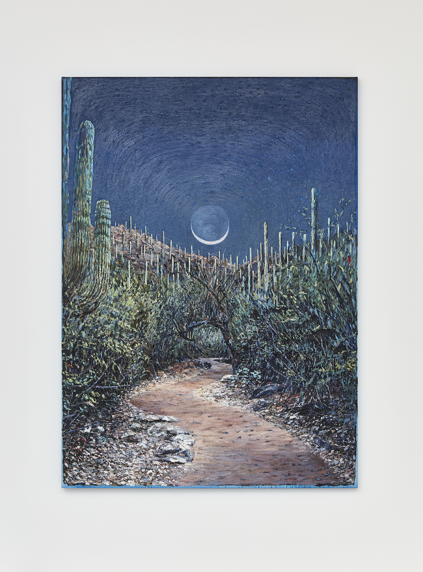 Wet Moon, Clear Path (Tucson)