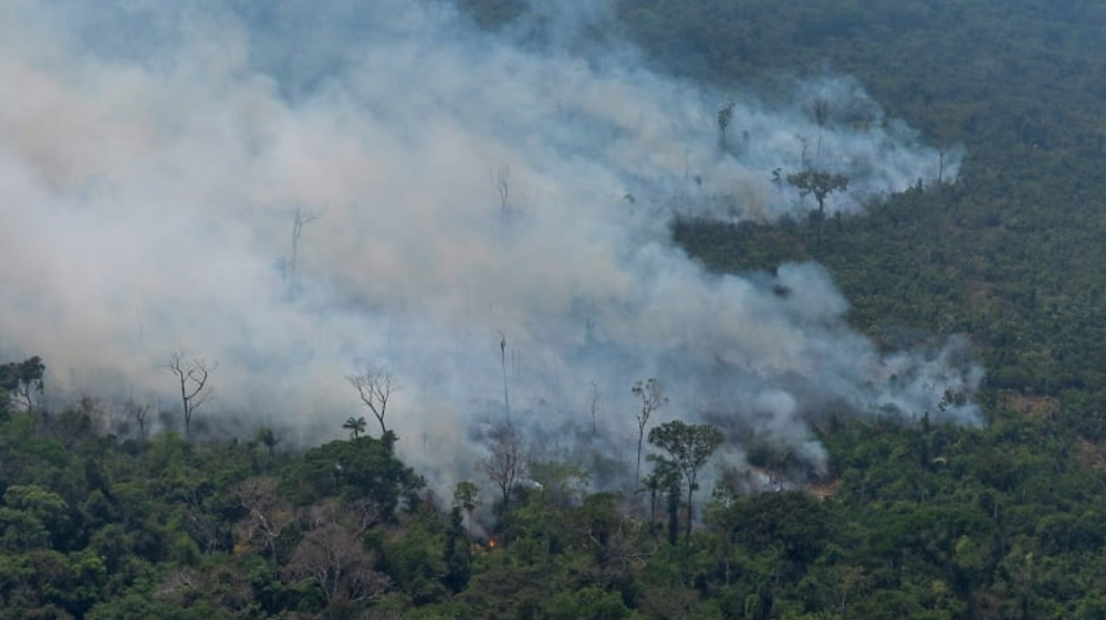 Fire consumes an area near Porto Velho, Brazil on Friday. Brazilian state experts have reported a record of nearly 77,000 wildfires across the country so far this year. Brazil contains about 60 per cent of the Amazon rainforest, whose degradation could have severe consequences for global climate and rainfall. (Victor R. Caivano/The Associated Press)