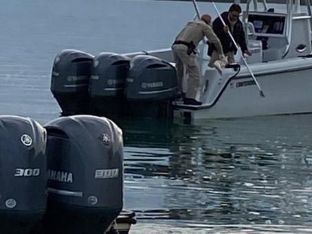 Capitán de barco encuentra pierna humana flotando